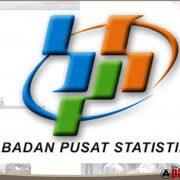 BPS Ajak Kepala Daerah Sukseskan Sensus Penduduk 2020