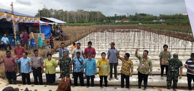 Dengan Pendampingan Bank Indonesia,  Kelompok Klaster Sorong Diharapkan Lebih Mandiri