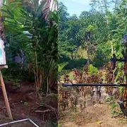 Atlit Panahan Papua Barat Mengasa Prestasi Menuju PON 2020