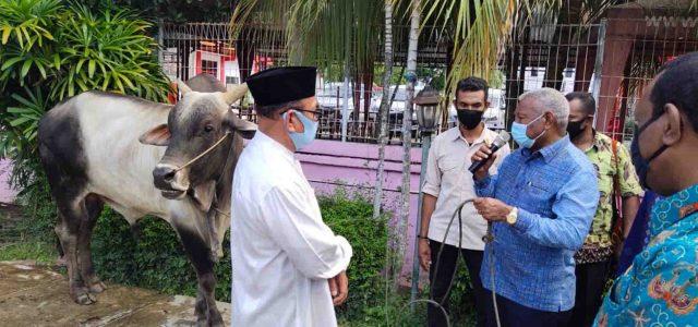 Gubernur Papua Barat Sumbang 85 Ekor Sapi di Idul Adha 1441 Hijriah