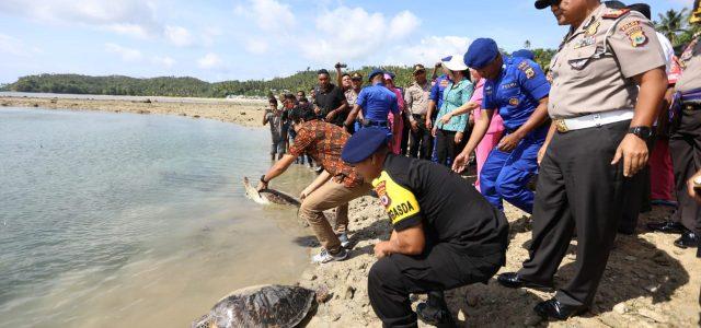 Kapolda Maluku Lepas 9 Ekor Penyu Tangkapan Nelayan