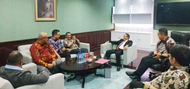 BKPM Gandeng Pemda Investasi Gas dan Listrik di Teluk Bintuni