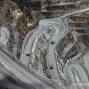 Smelter Freeport di Gresik Ditargetkan Beroperasi 2023