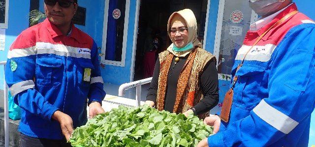 Pertamina Berdayakan Kelompok Binaan CSR di  Ternate Bantu Nutrisi Tenaga Medis COVID-19